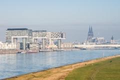 Blick von der Südbrücke über die Poller Wiesen und Rhein auf die neuen und das alte Wahrzeichen Kölns