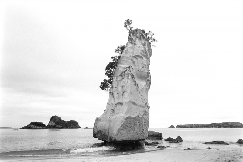 Cathedral Cove Beach, Coromandel Peninsula