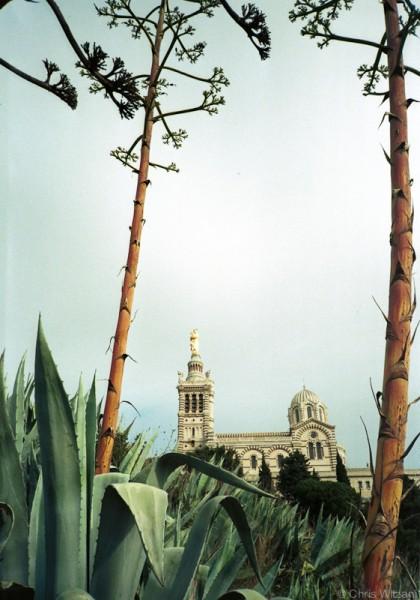 Notre Dame #02