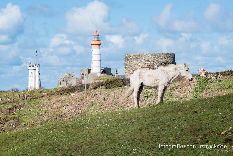 Saint-Mathieu – Finistère #5651