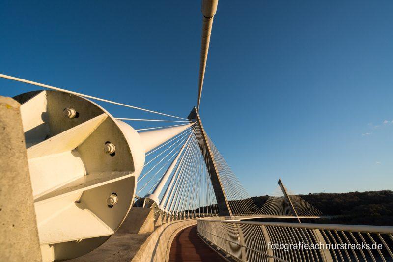 Pont de Térénez #6113