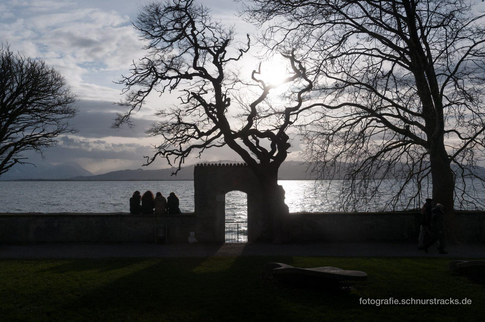 Vier auf der Mauer am Bodensee #720