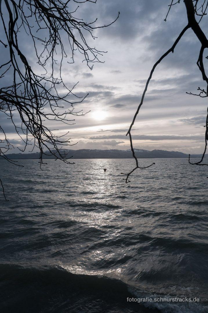 Bodensee im Winter #0733