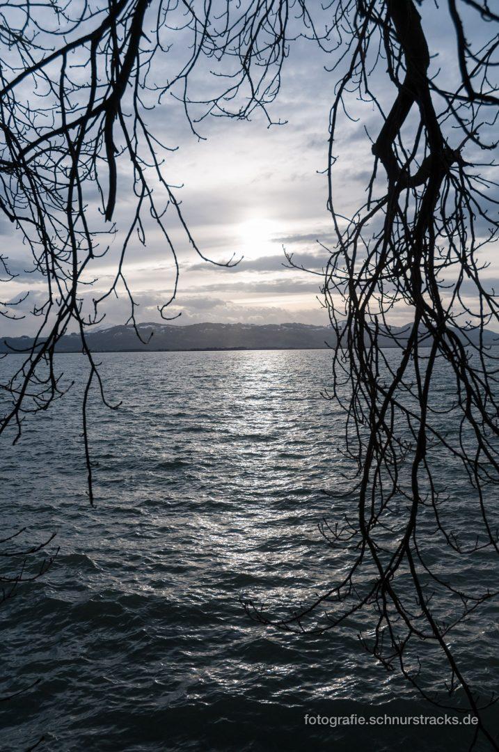 Bodensee im Winter #0742