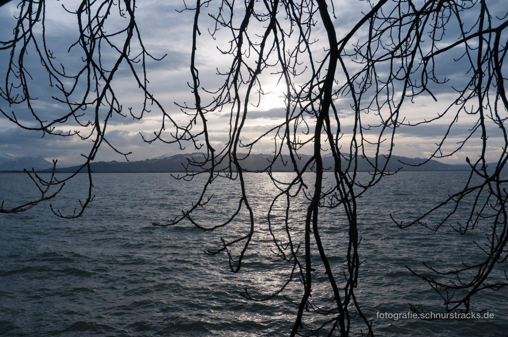 Bodensee im Winter #0744