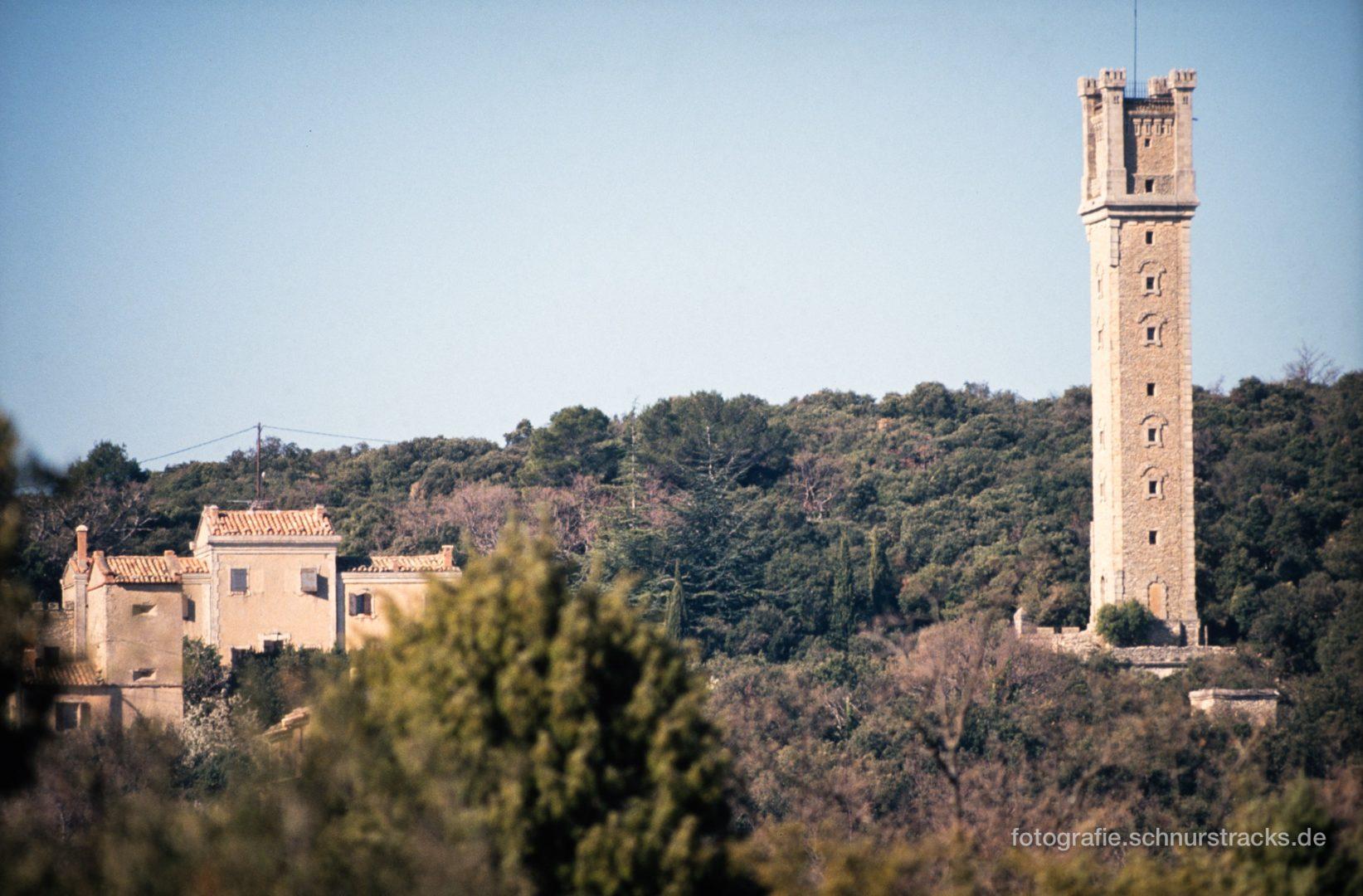 Foret des cedres - Bonnieux - Provence