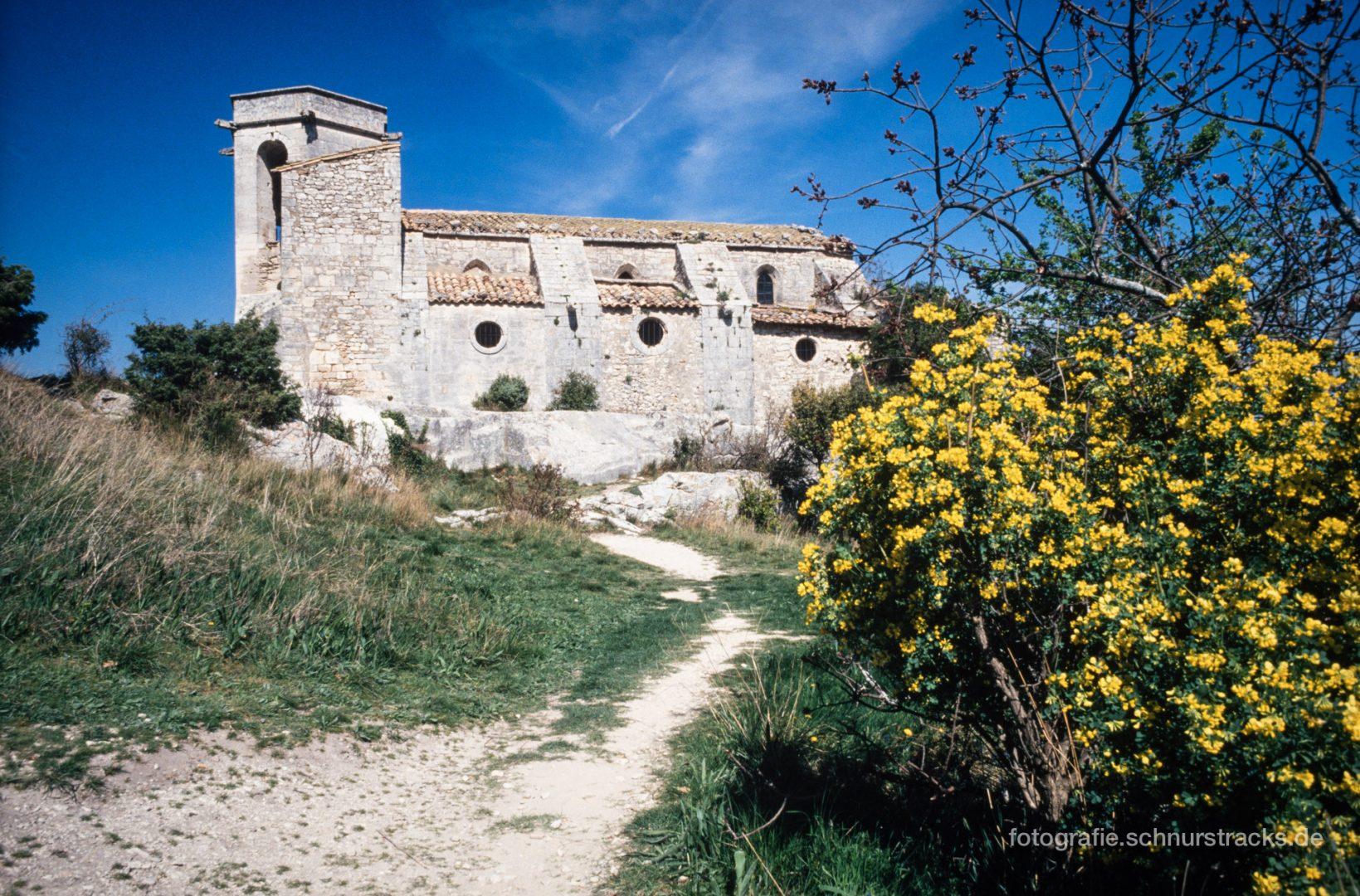 Provence - Oppède le Vieux #0650