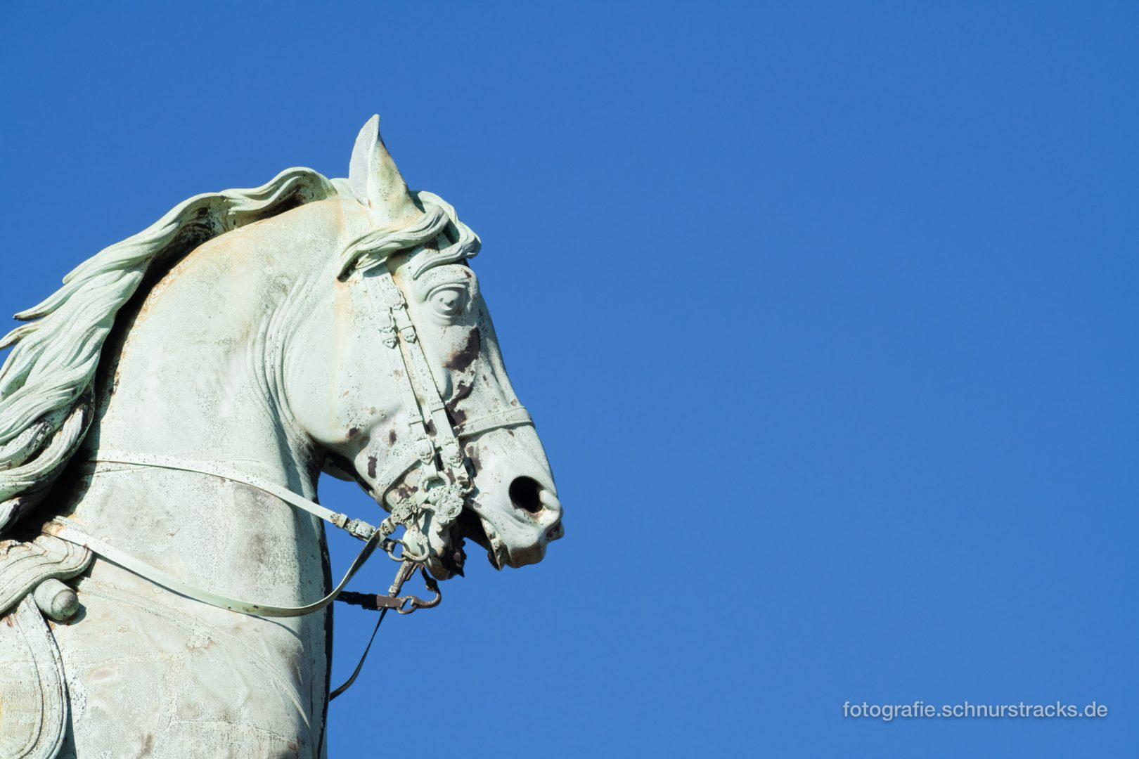 Reiterstandbild Denkmal Kaiser Wilhelm I. #1143