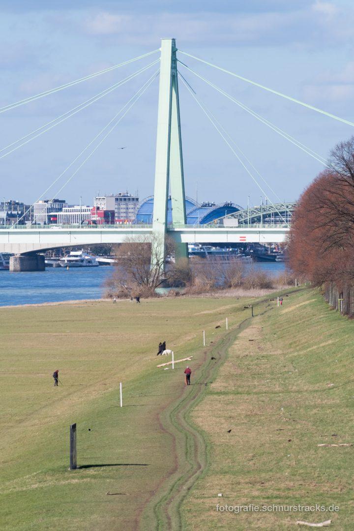 Severinsbrücke und Poller Wiesen #0927