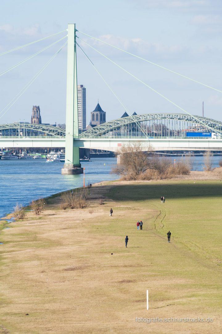 Severinsbrücke und Poller Wiesen #1061