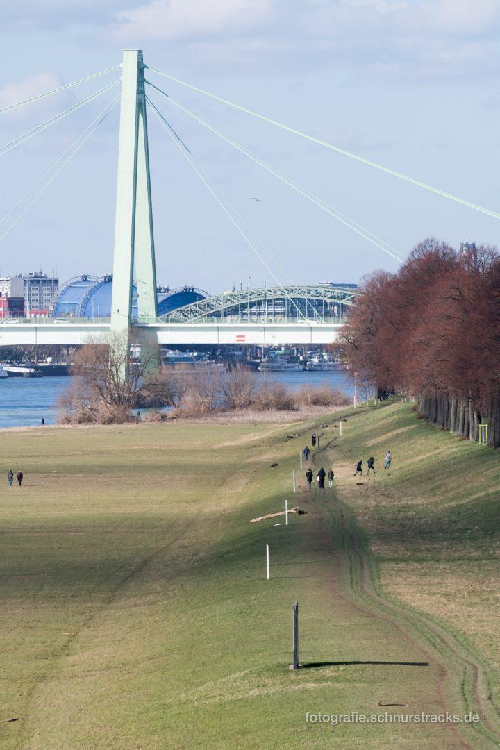 Severinsbrücke und Poller Wiesen #1083