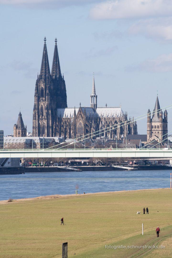 Kölner Dom und Poller Wiesen #0925