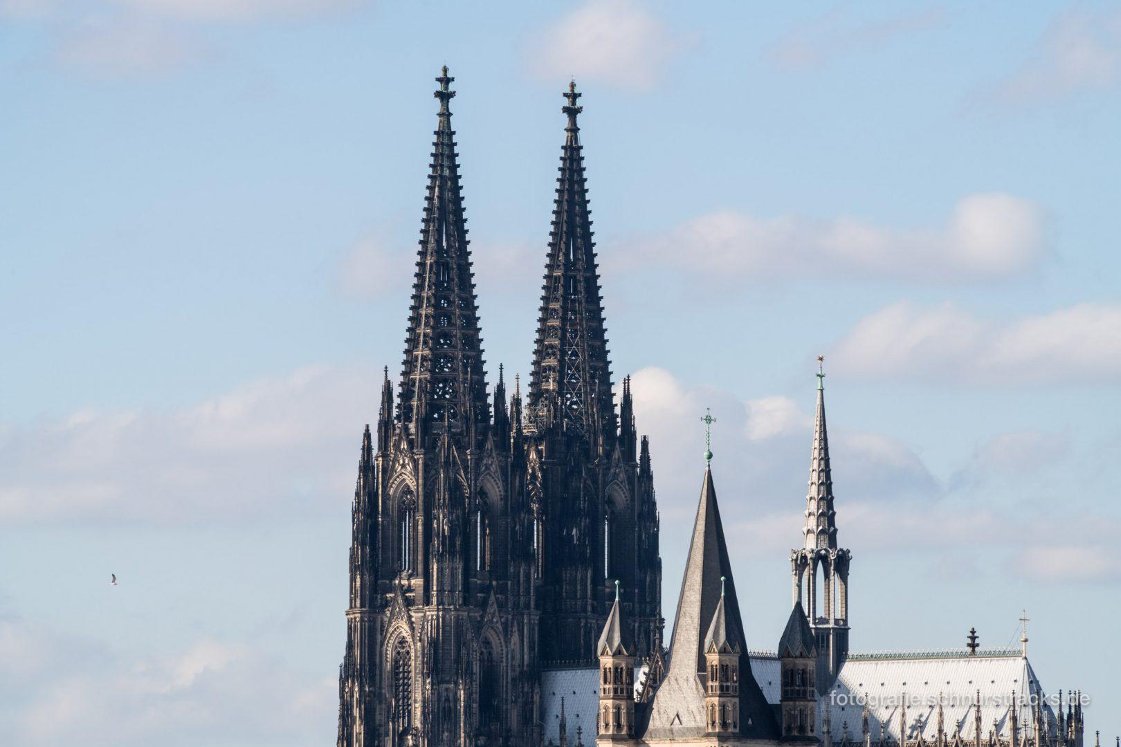 Kölner Dom und Groß St. Martin #1092