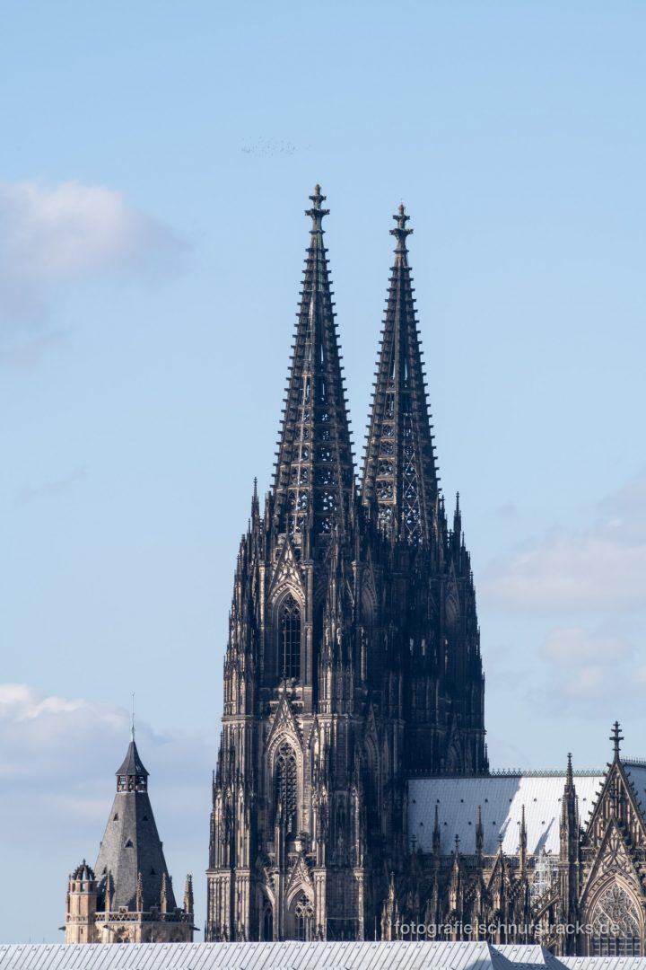 Kölner Dom und Rathausturm #1130