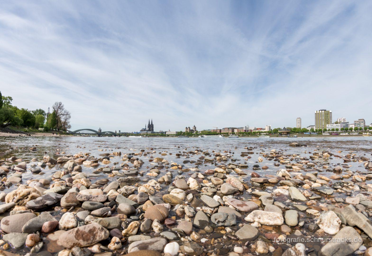 Rheinufer #1510