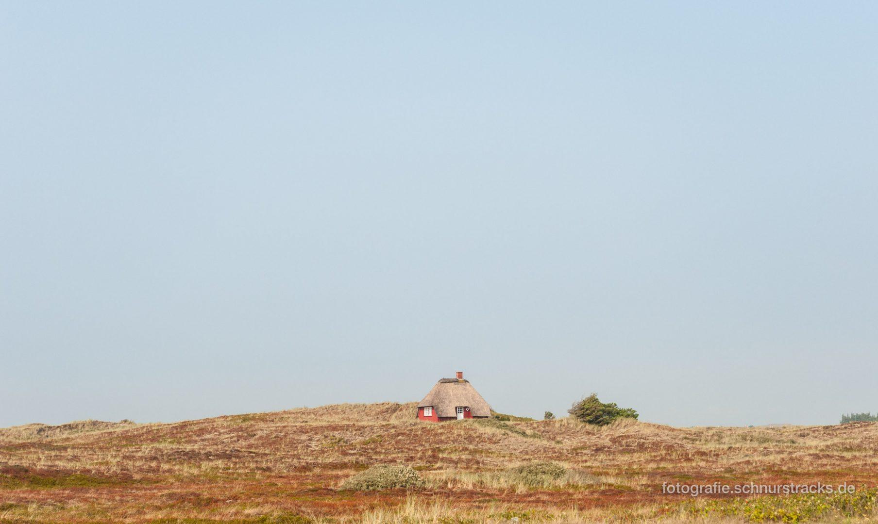 Ferienhaus in den Dünen – Westjütland