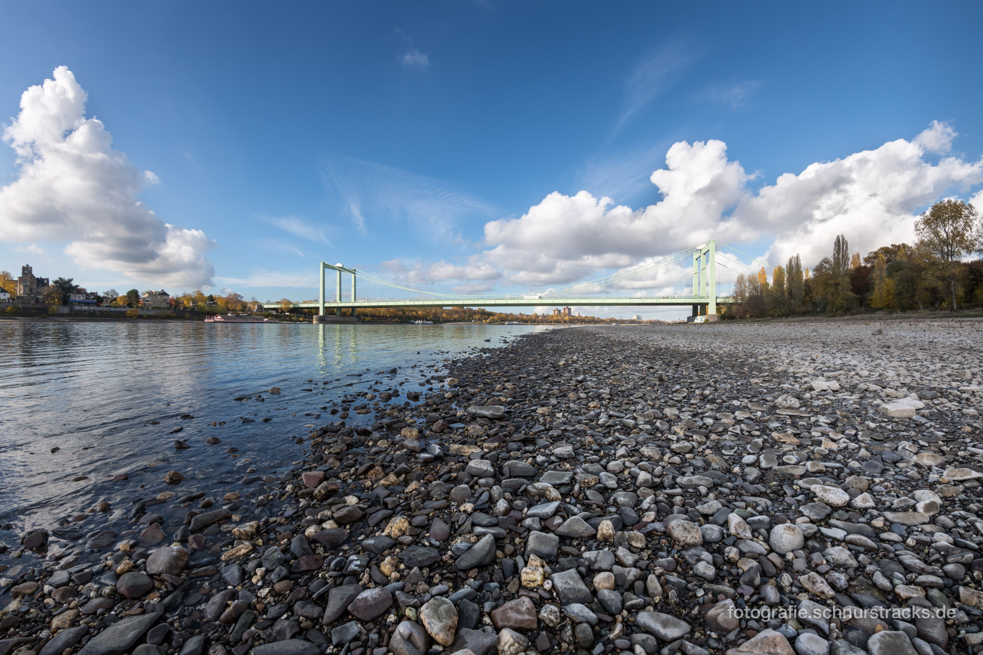 Rodenkirchener Brücke #6306