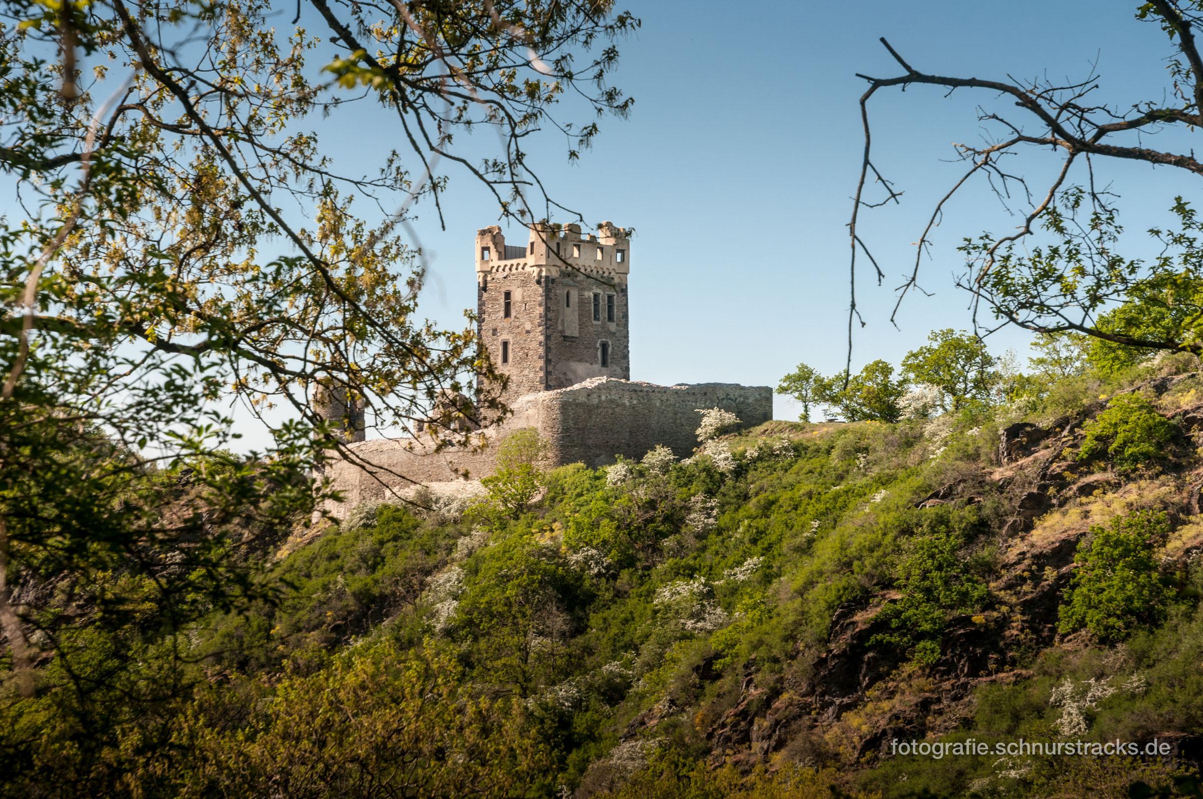 Burg Wernerseck