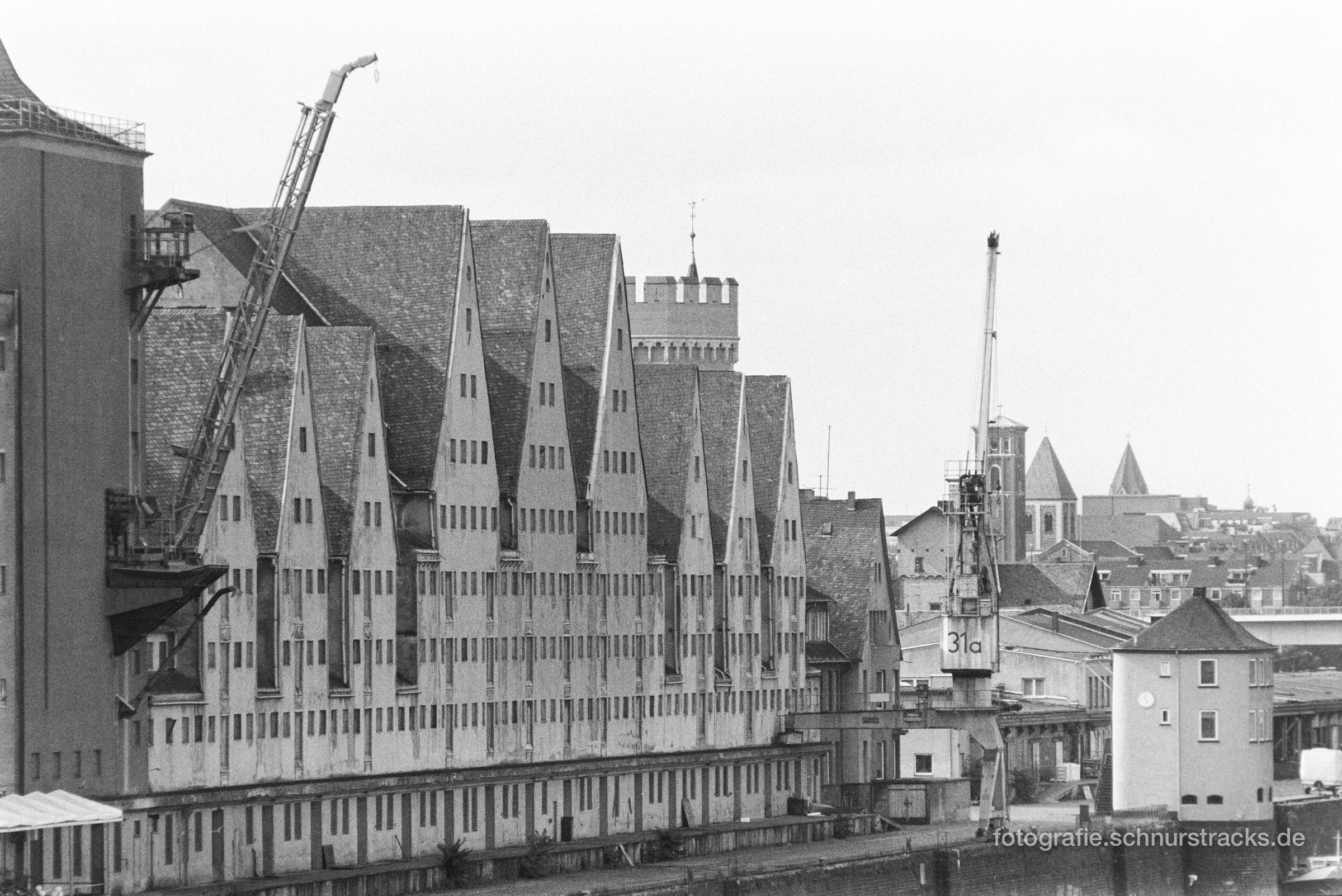 Südbrücke und Rheinauhafen 1994