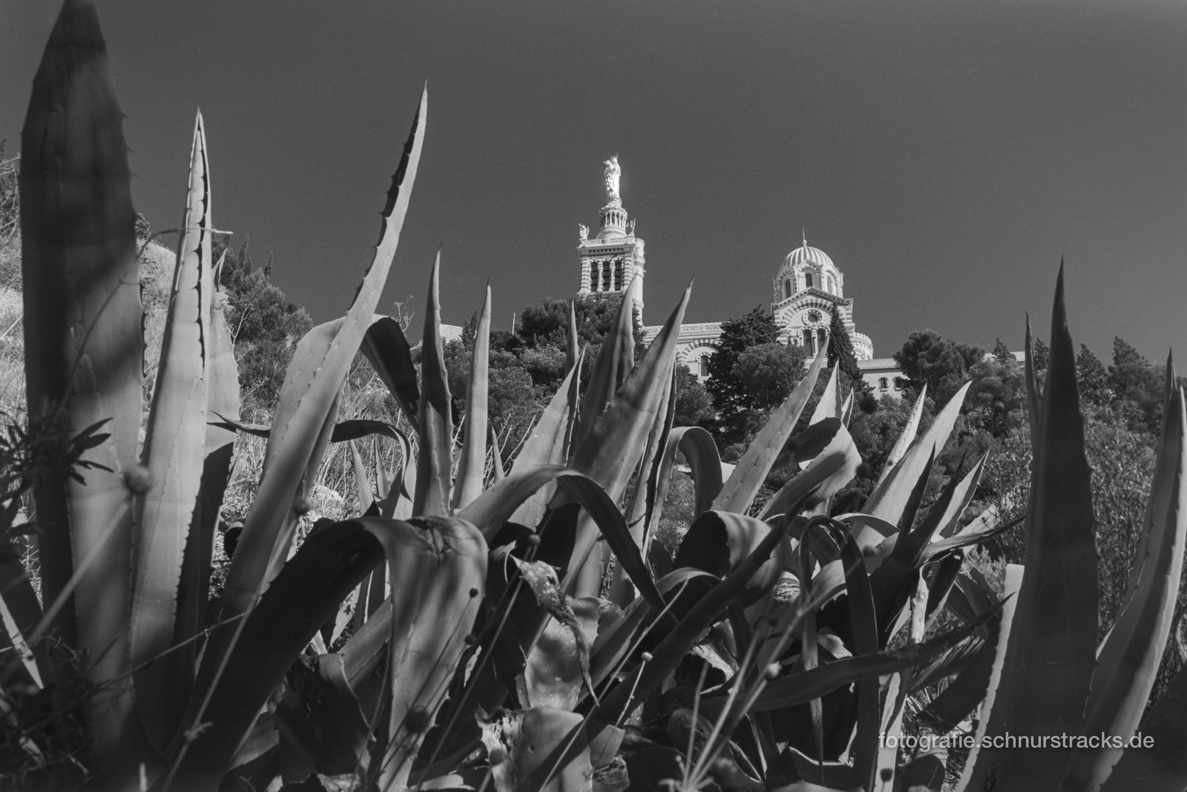 Notre Dame de la Garde mit Agaven
