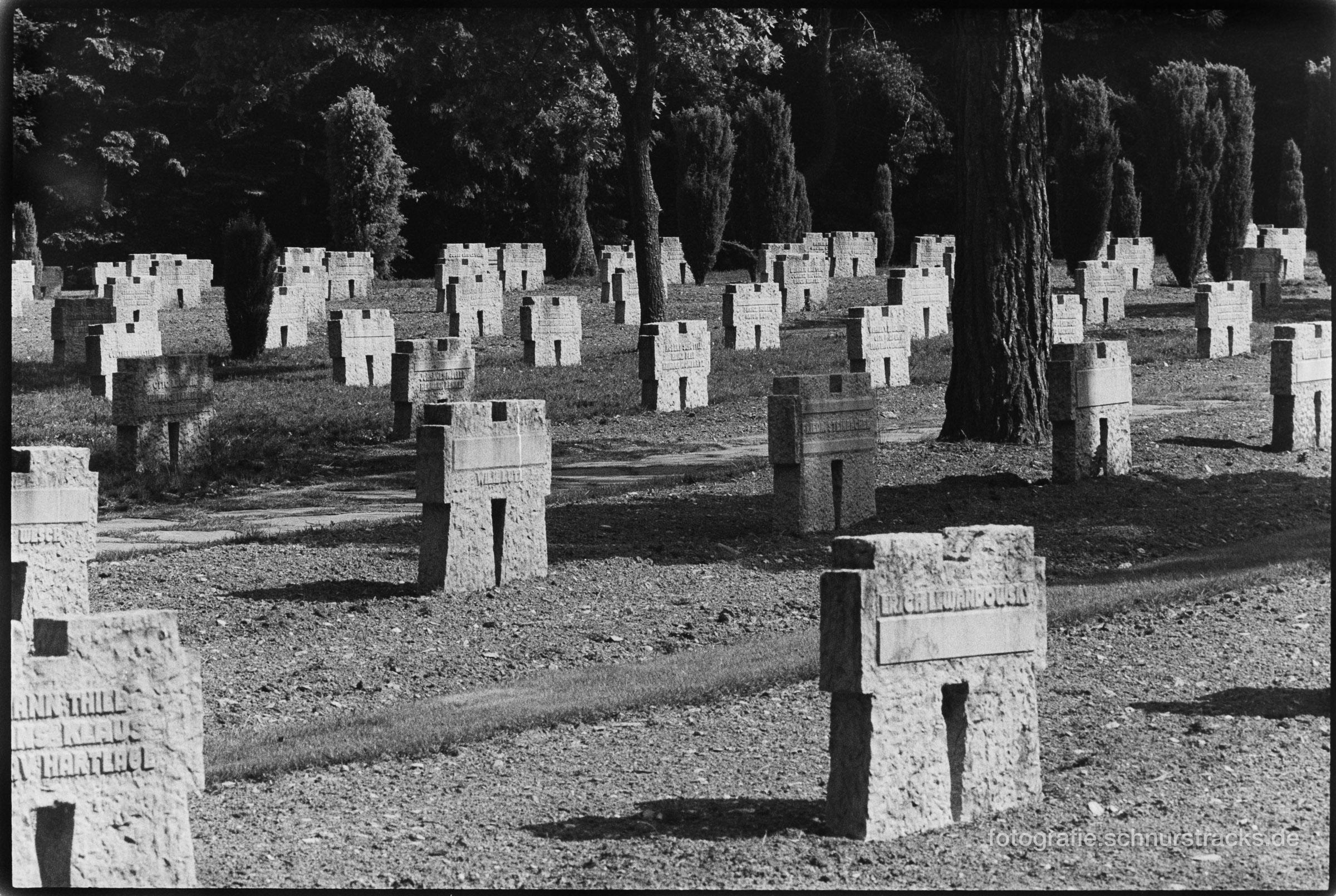 Kameradenkreuze auf dem Soladenfriedhof