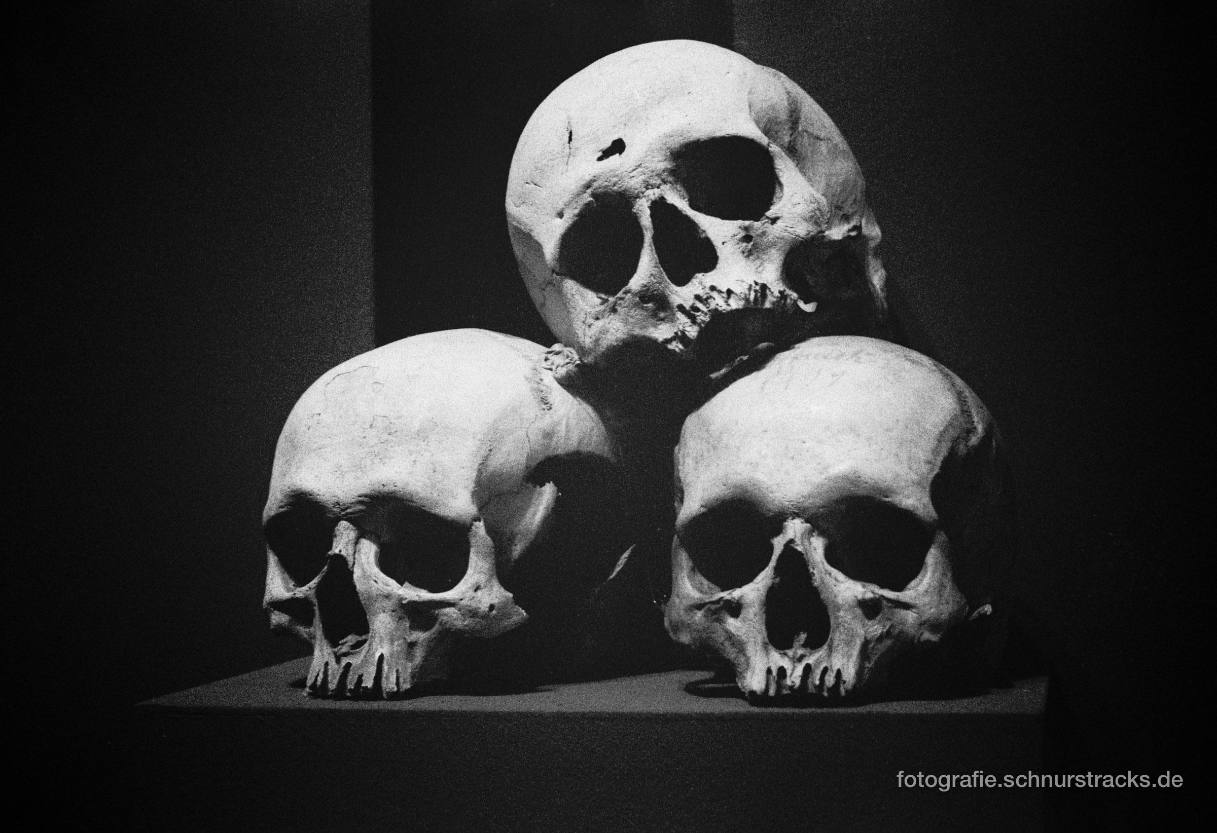 Totenschädel von Dornac